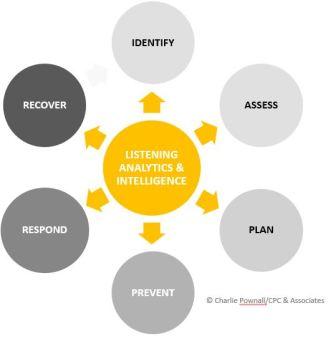 Charlie Pownall/CPC & Associates - Risk & Reputation Management Framework, 2016